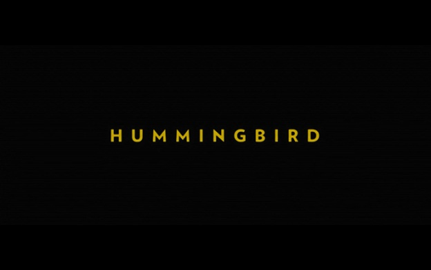 Hummingbird title screen