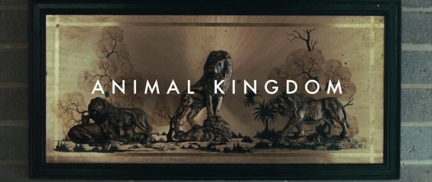 Animal Kingdom title screen